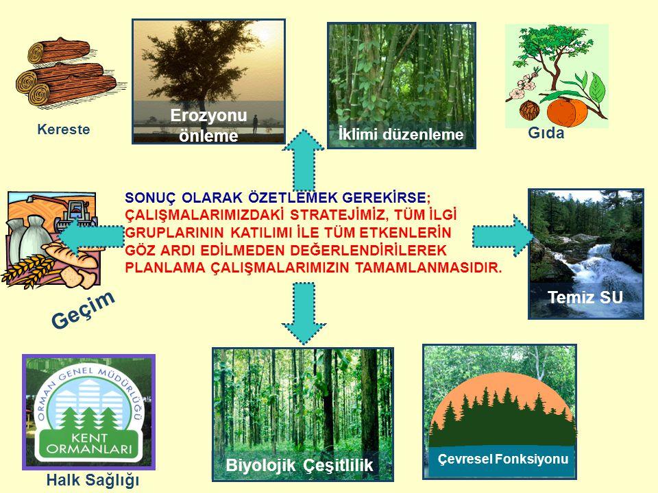İklimi düzenleme Erozyonu önleme Biyolojik Çeşitlilik Ucuz enerji Temiz SU Çevresel Fonksiyonu Kereste Gıda Halk Sağlığı Geçim SONUÇ OLARAK ÖZETLEMEK