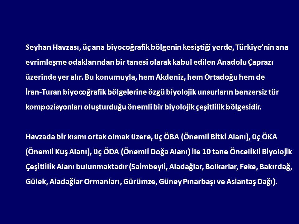Seyhan Havzası, üç ana biyocoğrafik bölgenin kesiştiği yerde, Türkiye'nin ana evrimleşme odaklarından bir tanesi olarak kabul edilen Anadolu Çaprazı ü