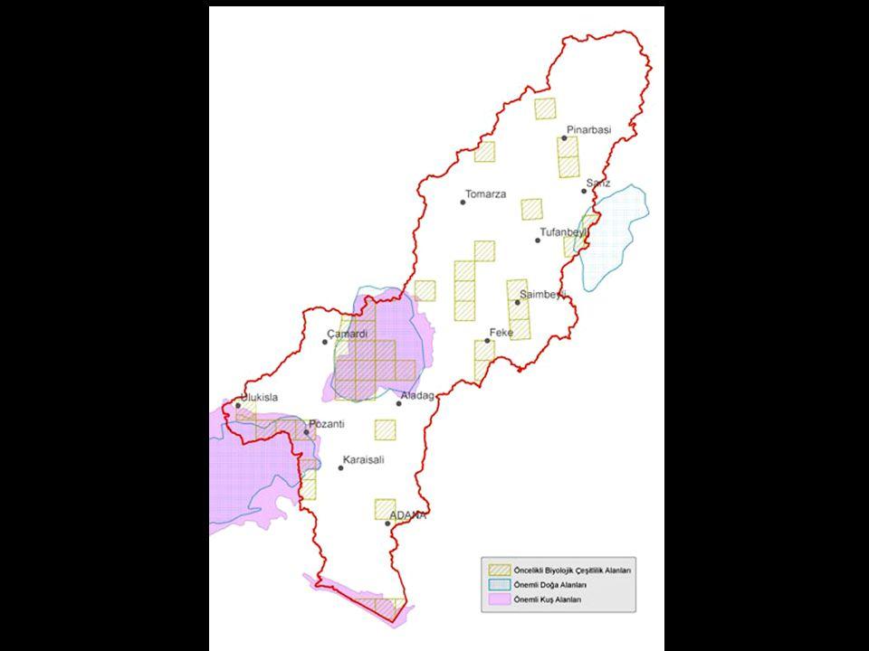 Havza Bilgileri: ADANA KAYSERİ NİĞDE K.MARAŞ SİVAS Nüfus:2.4 milyon Alan:21.741 km 2 Nüfusun % 75'i şehirlerde Bu durum TR geneli ile uyumlu Nüfusun sektörlere göre dağılımı: -Tarım: % 28 - Hayvancılık: % 11 - Hizmet: % 9,8 - İşsizlik oranı: erkeklerde % 32 bayanlarda % 18 Kaynak:Livelihood Baseline Analysis in Seyhan River Basin, http://www.undp.org.tr/ http://www.undp.org.tr/