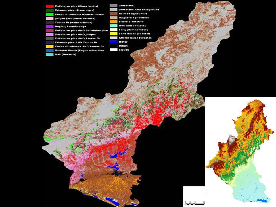 % 40.5 Tarım % 56.8 Orman ve Yarı Doğal Alanlar % 2.7 Su ve Yapay Alanlar Seyhan Havzası Arazi Kullanım Dağılımı