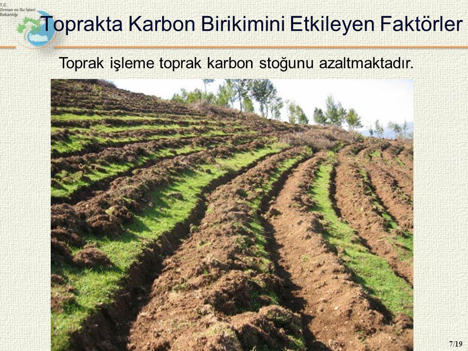 Toprakta Karbon Birikimini Etkileyen Faktörler 7/19 Toprak işleme toprak karbon stoğunu azaltmaktadır.