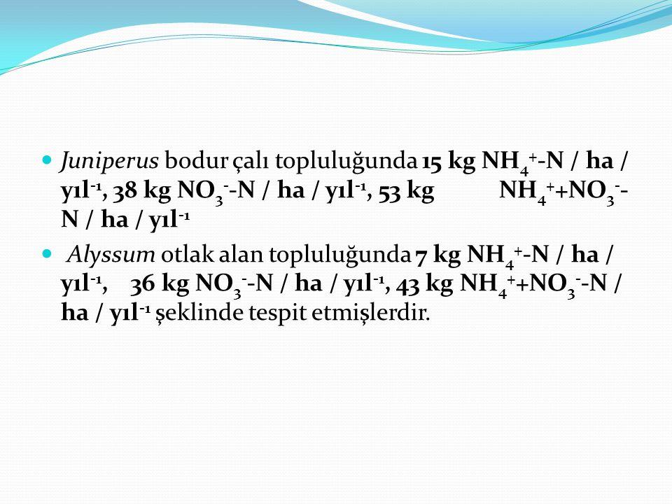 Juniperus bodur çalı topluluğunda 15 kg NH 4 + -N / ha / yıl -1, 38 kg NO 3 - -N / ha / yıl -1, 53 kg NH 4 + +NO 3 - - N / ha / yıl -1 Alyssum otlak alan topluluğunda 7 kg NH 4 + -N / ha / yıl -1, 36 kg NO 3 - -N / ha / yıl -1, 43 kg NH 4 + +NO 3 - -N / ha / yıl -1 şeklinde tespit etmişlerdir.