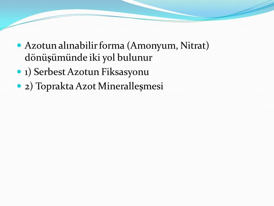 Azotun alınabilir forma (Amonyum, Nitrat) dönüşümünde iki yol bulunur 1) Serbest Azotun Fiksasyonu 2) Toprakta Azot Mineralleşmesi