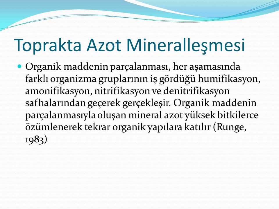 Toprakta Azot Mineralleşmesi Organik maddenin parçalanması, her aşamasında farklı organizma gruplarının iş gördüğü humifikasyon, amonifikasyon, nitrif