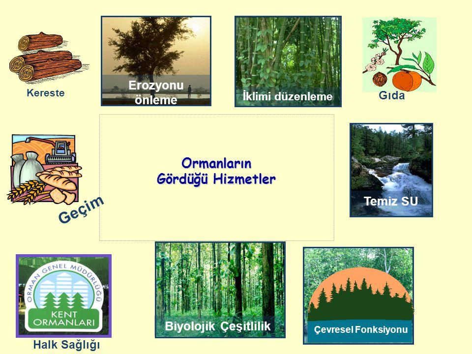 İklimi düzenleme Erozyonu önleme Ormanların Gördüğü Hizmetler Biyolojik Çeşitlilik Ucuz enerji Temiz SU Çevresel Fonksiyonu Kereste Gıda Halk Sağlığı