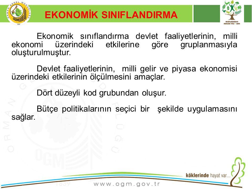 16/12/2010 Kurumsal Kimlik 29 Ekonomik sınıflandırma devlet faaliyetlerinin, milli ekonomi üzerindeki etkilerine göre gruplanmasıyla oluşturulmuştur.