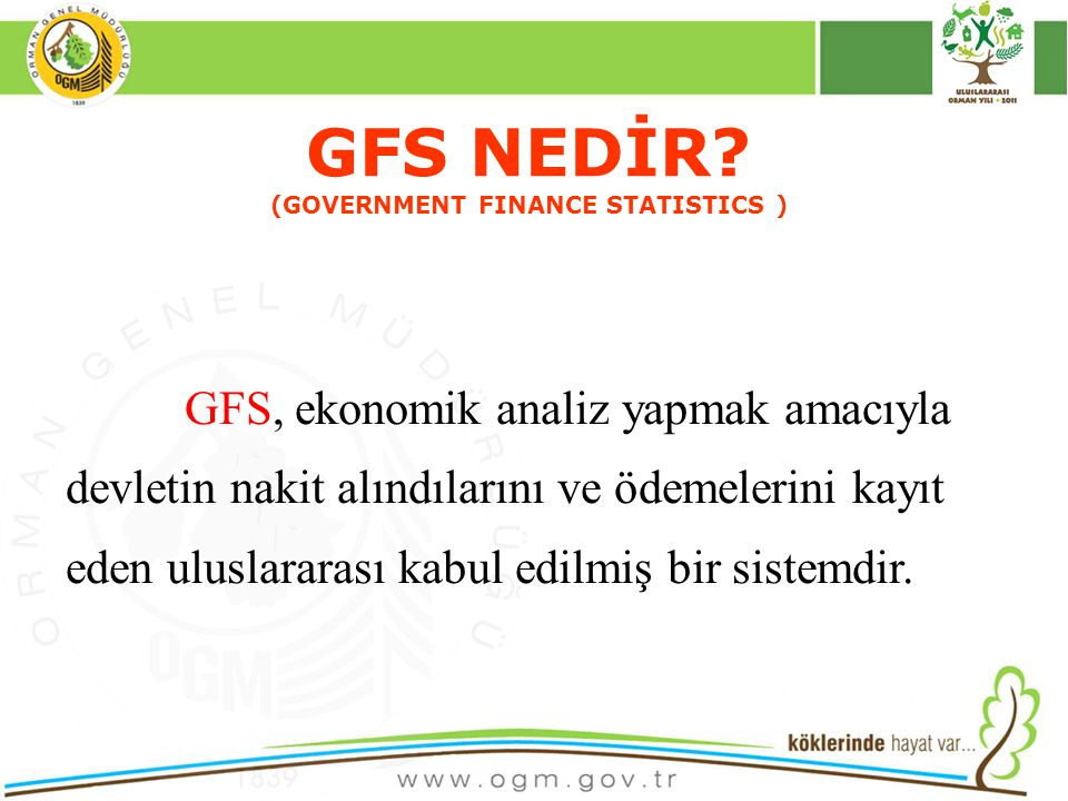 16/12/2010 Kurumsal Kimlik 7 GFS NEDİR.