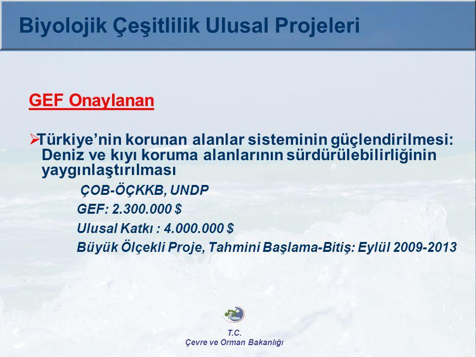 GEF Onaylanan  Türkiye'nin korunan alanlar sisteminin güçlendirilmesi: Deniz ve kıyı koruma alanlarının sürdürülebilirliğinin yaygınlaştırılması ÇOB-
