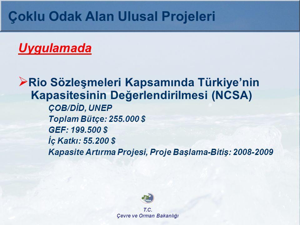 Uygulamada  Rio Sözleşmeleri Kapsamında Türkiye'nin Kapasitesinin Değerlendirilmesi (NCSA) ÇOB/DİD, UNEP Toplam Bütçe: 255.000 $ GEF: 199.500 $ İç Ka