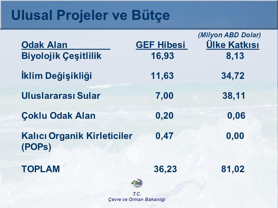 (Milyon ABD Dolar) Odak Alan GEF Hibesi Ülke Katkısı Biyolojik Çeşitlilik 16,93 8,13 İklim Değişikliği 11,63 34,72 Uluslararası Sular 7,00 38,11 Çoklu