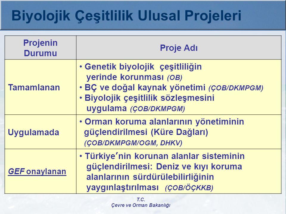 Uygulamada  Anadolu Su Havzaları Rehabilitasyon Projesi ÇOB/AGM/ÇYGM/ORKÖY, Tarım ve Köy İşleri Bak., DB Toplam Bütçe: 44.900.000 $ GEF: 7.000.000 $ İç Katkı: 38.110.000 $ (DB Kredisi: 15.700.000 $) Büyük Ölçekli Proje, Proje Başlama-Bitiş: 2005-2011 T.C.