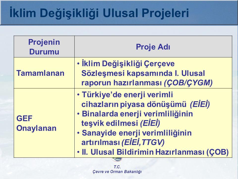 Uygulamada  Rio Sözleşmeleri Kapsamında Türkiye'nin Kapasitesinin Değerlendirilmesi (NCSA) ÇOB/DİD, UNEP Toplam Bütçe: 255.000 $ GEF: 199.500 $ İç Katkı: 55.200 $ Kapasite Artırma Projesi, Proje Başlama-Bitiş: 2008-2009 T.C.