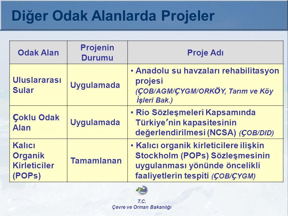 Tamamlanan  Kalıcı Organik Kirleticilere İlişkin Stockholm (POPs) Sözleşmesinin uygulanması yönünde öncelikli faaliyetlerin tespiti ÇOB/ÇYGM, UNIDO Toplam Bütçe: 469.700 $ GEF: 469.700 $ İç Katkı: Yok Kapasite Artırma Projesi, Proje Başlama-Bitiş: 2004-2007 T.C.