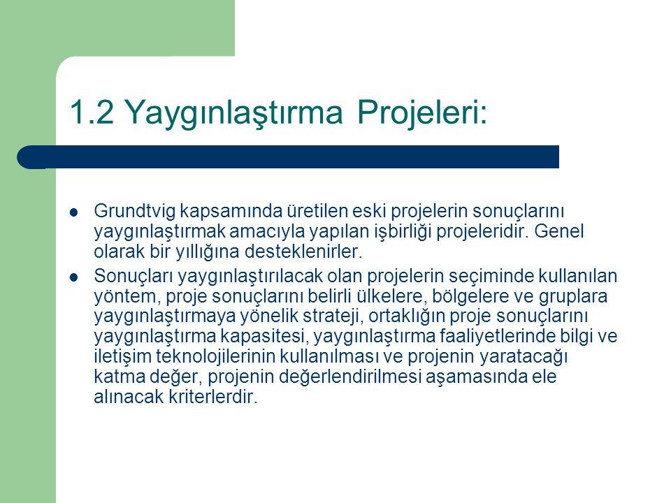 1.2 Yaygınlaştırma Projeleri: Grundtvig kapsamında üretilen eski projelerin sonuçlarını yaygınlaştırmak amacıyla yapılan işbirliği projeleridir. Genel