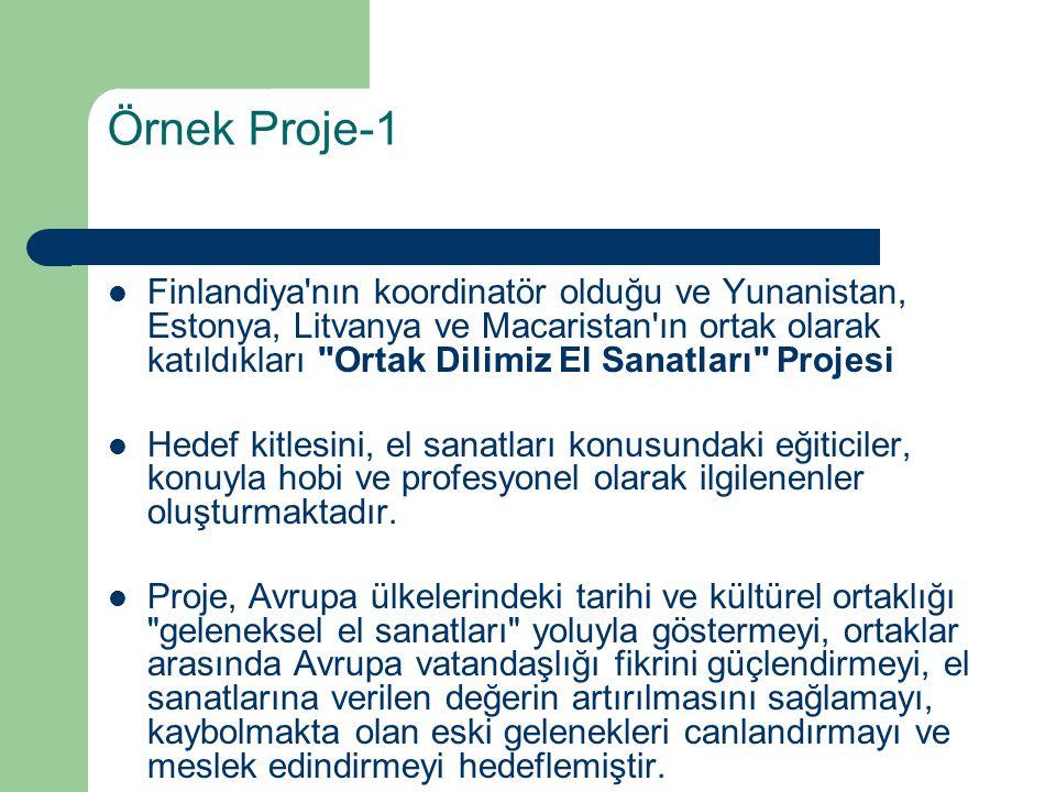 Örnek Proje-1 Finlandiya'nın koordinatör olduğu ve Yunanistan, Estonya, Litvanya ve Macaristan'ın ortak olarak katıldıkları