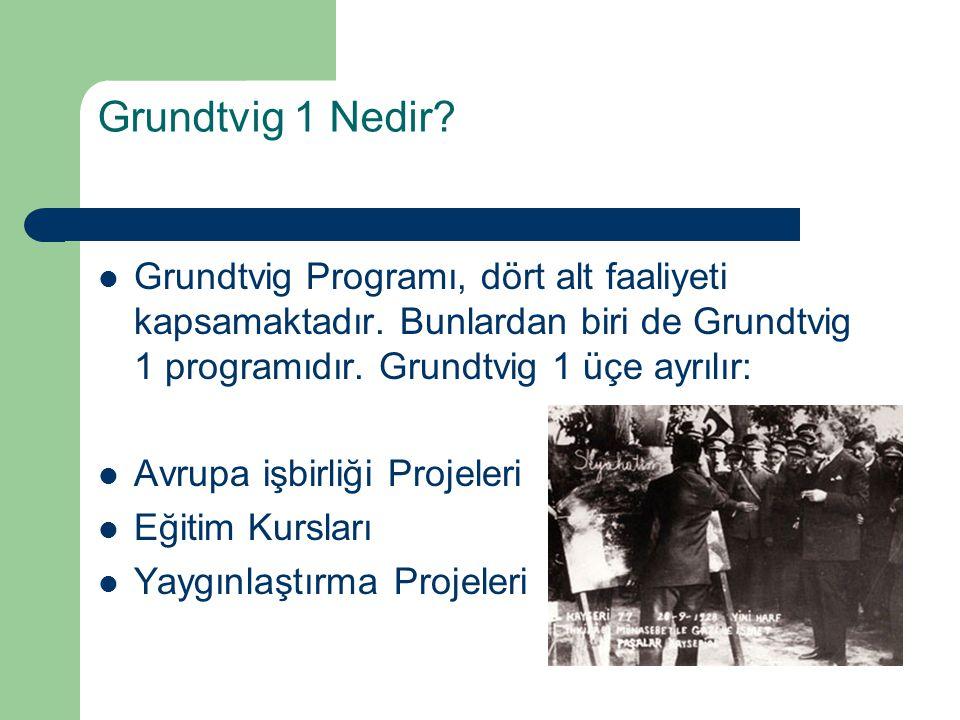 Grundtvig 1 Nedir? Grundtvig Programı, dört alt faaliyeti kapsamaktadır. Bunlardan biri de Grundtvig 1 programıdır. Grundtvig 1 üçe ayrılır: Avrupa iş
