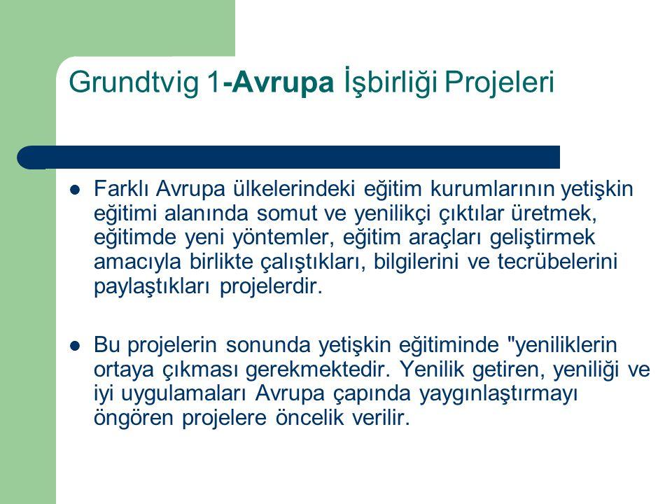 Projelerin Avrupa Komisyonunca yayımlanan Socrates Genel Teklif Çağrısında yer alan öncelik listesine uygun olması, Projelerin içerik, ortaklık yapısı, sonuçlar ve yaygınlaştırma açısından Avrupa boyutuna sahip olması, - Grundtvig 1-eğitim kurslarında, projelerin yetişkin eğitimi alanında çalışan eğiticilerin eğitimine önemii bir katkı yapması, Grundtvig 1 ortaklıklarının dengeli bir coğrafi dağılımının olması beklenmektedir, Grundtvig 1-Avrupa işbirliği projelerinde Avrupa Birliğinden herhangi bir mali destek almamış ve bu alanda hiç tecrübesi olmayan ya da çok az tecrübesi olan kurumlara öncelik tanınmaktadır.