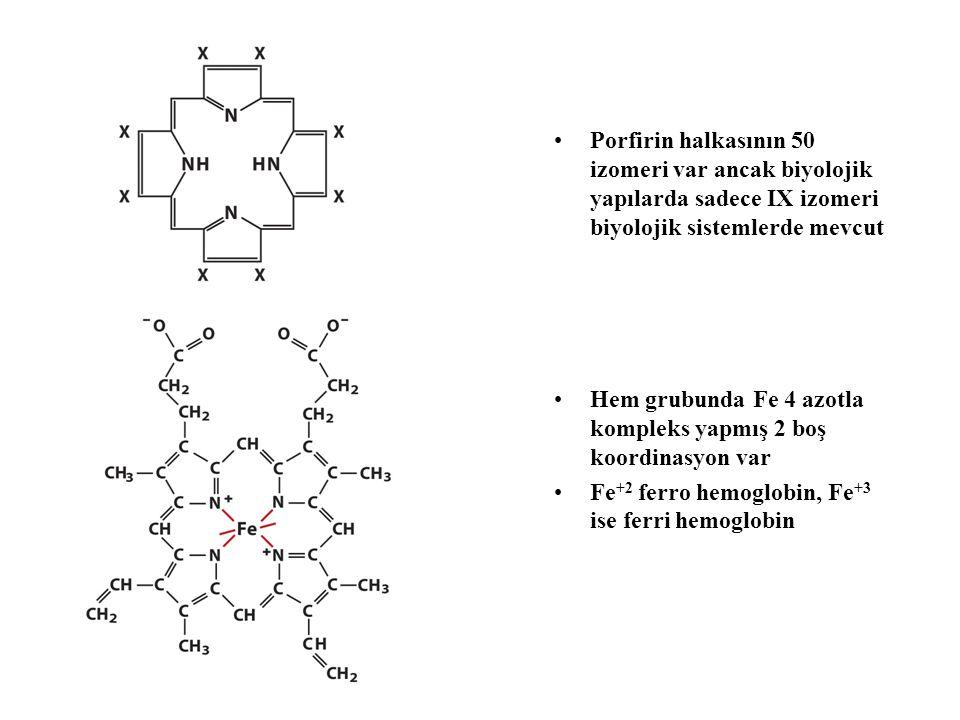 Porfirin halkasının 50 izomeri var ancak biyolojik yapılarda sadece IX izomeri biyolojik sistemlerde mevcut Hem grubunda Fe 4 azotla kompleks yapmış 2 boş koordinasyon var Fe +2 ferro hemoglobin, Fe +3 ise ferri hemoglobin