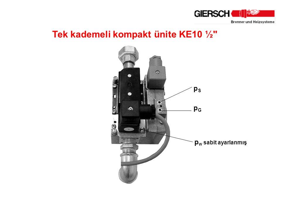 Tek kademeli kompakt ünite KE10 ½ p W sabit ayarlanmış pGpG pSpS