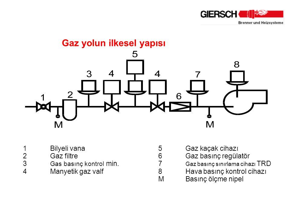 Gaz yolun ilkesel yapısı