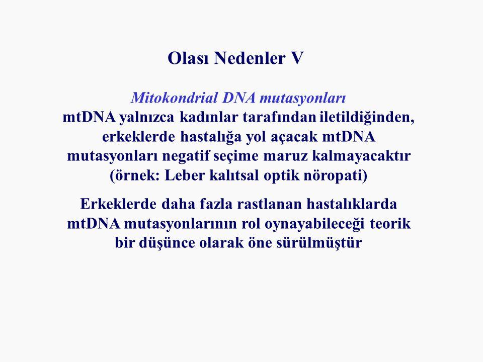Olası Nedenler V Mitokondrial DNA mutasyonları mtDNA yalnızca kadınlar tarafından iletildiğinden, erkeklerde hastalığa yol açacak mtDNA mutasyonları negatif seçime maruz kalmayacaktır (örnek: Leber kalıtsal optik nöropati) Erkeklerde daha fazla rastlanan hastalıklarda mtDNA mutasyonlarının rol oynayabileceği teorik bir düşünce olarak öne sürülmüştür