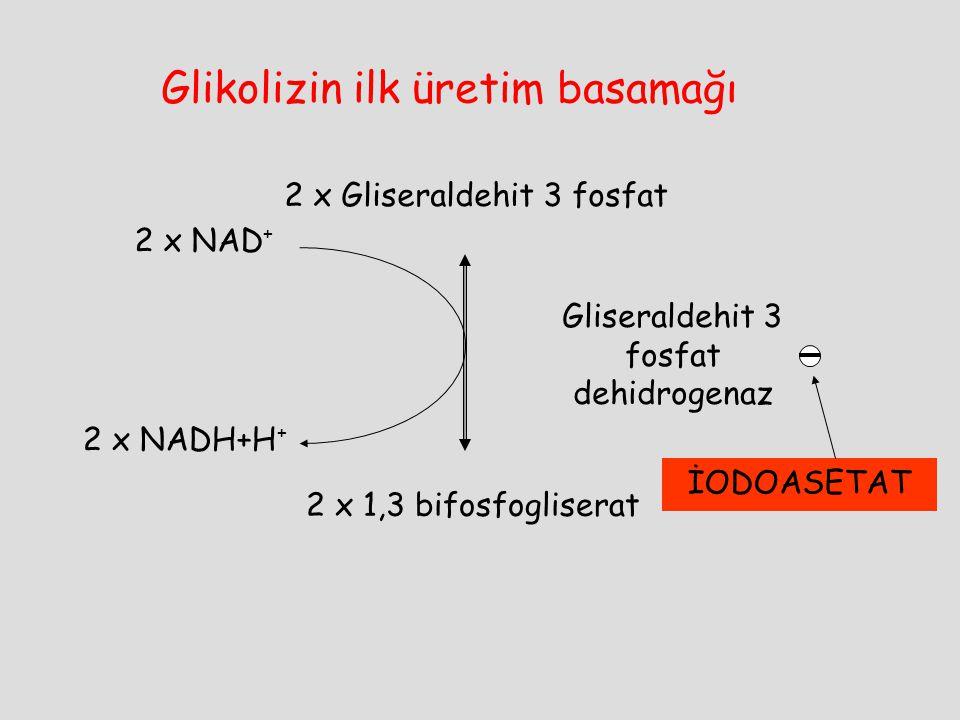 2 x Gliseraldehit 3 fosfat 2 x 1,3 bifosfogliserat Gliseraldehit 3 fosfat dehidrogenaz 2 x NAD + 2 x NADH+H + İODOASETAT Glikolizin ilk üretim basamağ