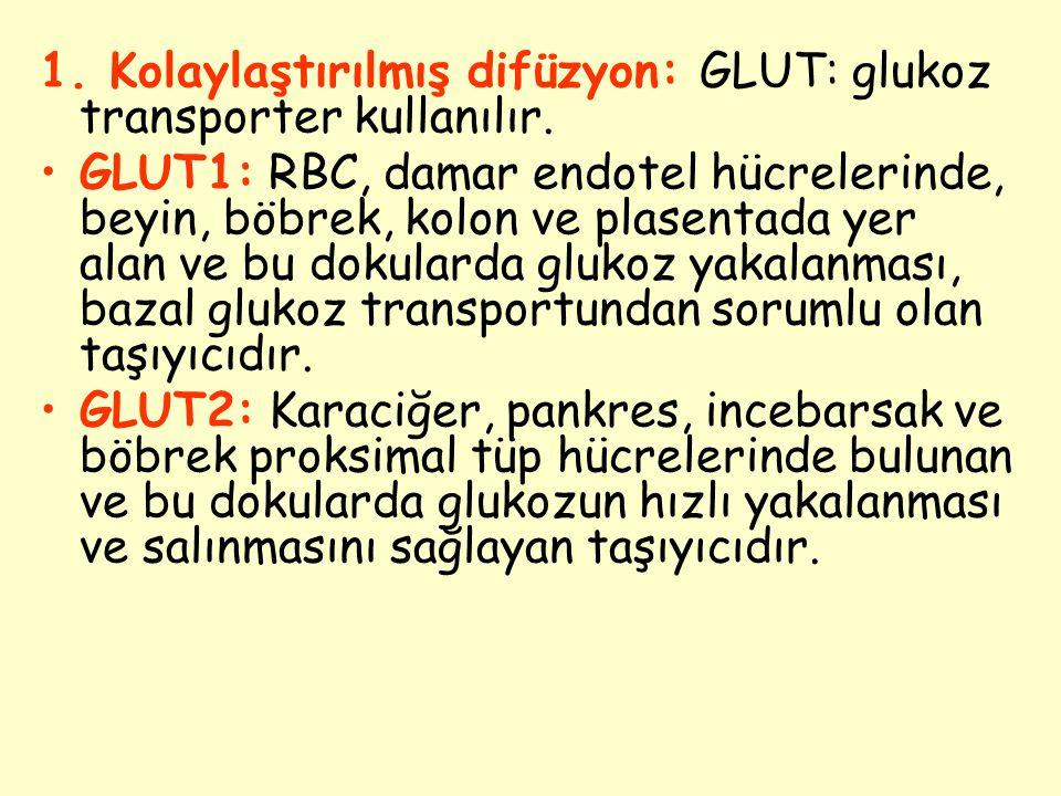 1. Kolaylaştırılmış difüzyon: GLUT: glukoz transporter kullanılır. GLUT1: RBC, damar endotel hücrelerinde, beyin, böbrek, kolon ve plasentada yer alan