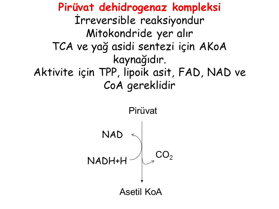 Asetil KoA CO 2 NAD NADH+H Pirüvat dehidrogenaz kompleksi İrreversible reaksiyondur Mitokondride yer alır TCA ve yağ asidi sentezi için AKoA kaynağıdı