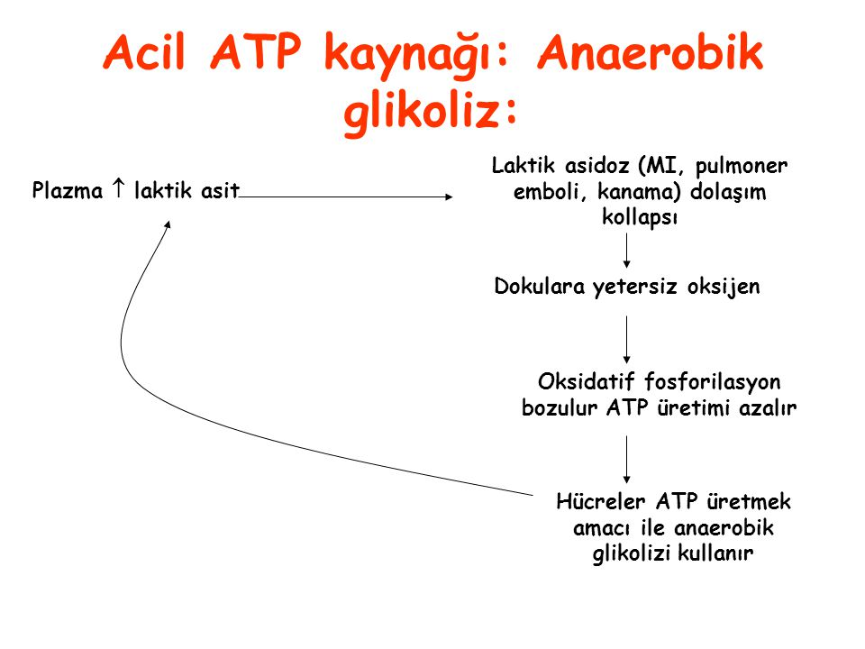 Acil ATP kaynağı: Anaerobik glikoliz: Plazma  laktik asit Laktik asidoz (MI, pulmoner emboli, kanama) dolaşım kollapsı Dokulara yetersiz oksijen Oksi