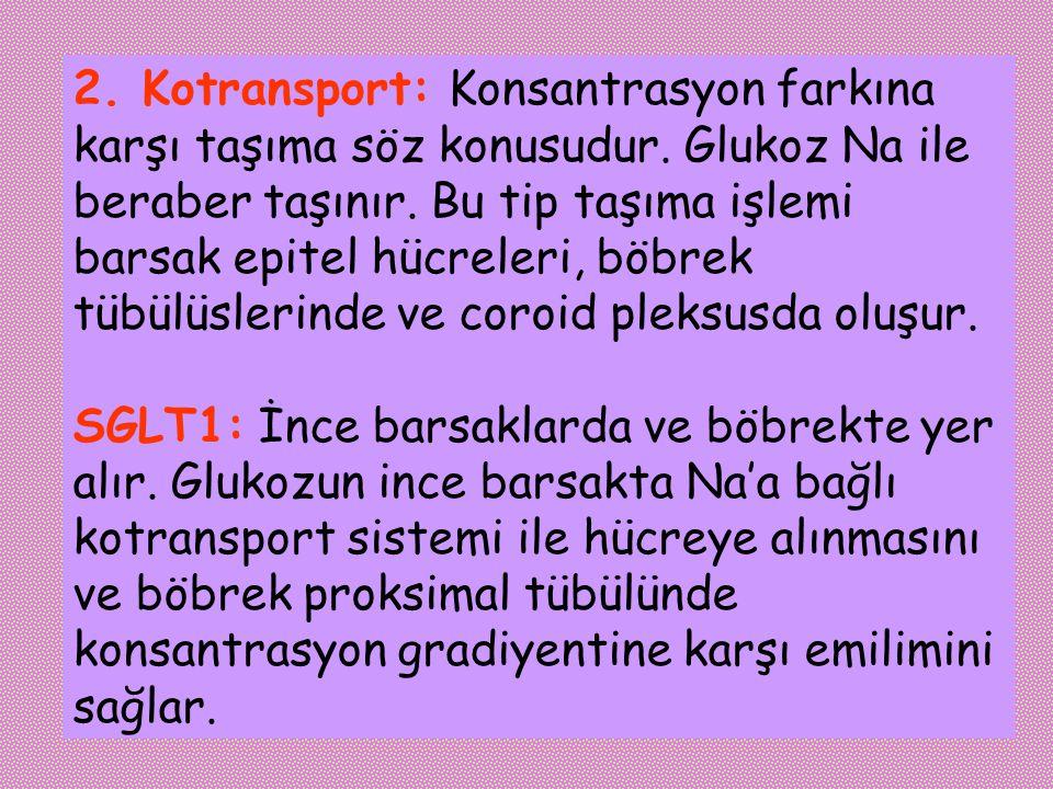 2. Kotransport: Konsantrasyon farkına karşı taşıma söz konusudur. Glukoz Na ile beraber taşınır. Bu tip taşıma işlemi barsak epitel hücreleri, böbrek