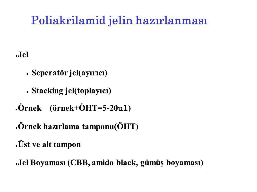 Poliakrilamid jelin hazırlanması ● Jel ● Seperatör jel(ayırıcı) ● Stacking jel(toplayıcı) ● Örnek(örnek+ÖHT=5-20 ul ) ● Örnek hazırlama tamponu(ÖHT) ●