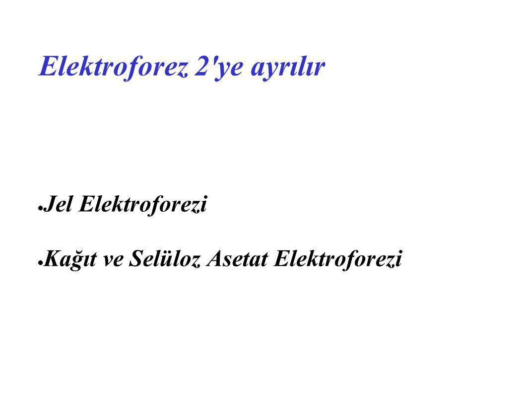 Elektroforez 2 ye ayrılır ● Jel Elektroforezi Jel Elektroforezi ● Kağıt ve Selüloz Asetat Elektroforezi Kağıt ve Selüloz Asetat Elektroforezi
