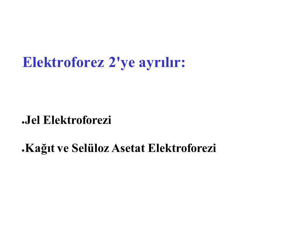 Elektroforez 2 ye ayrılır: ● Jel Elektroforezi Jel Elektroforezi ● Kağıt ve Selüloz Asetat Elektroforezi Kağıt ve Selüloz Asetat Elektroforezi