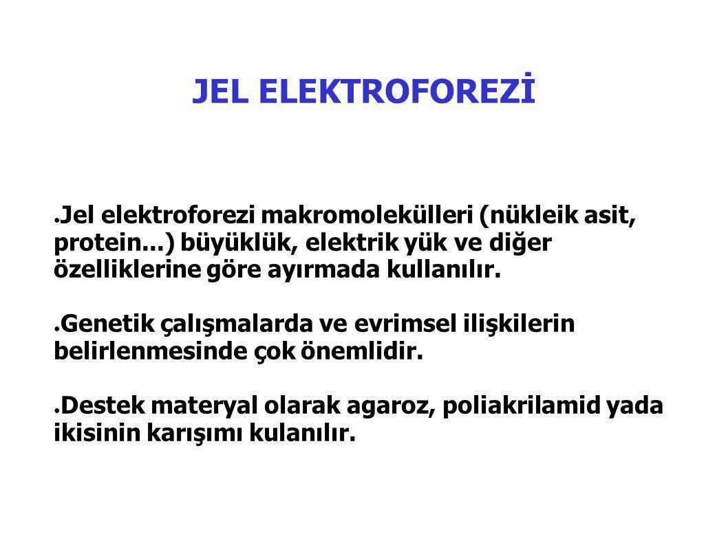 JEL ELEKTROFOREZİ ● Jel elektroforezi makromolekülleri (nükleik asit, protein...) büyüklük, elektrik yük ve diğer özelliklerine göre ayırmada kullanılır.