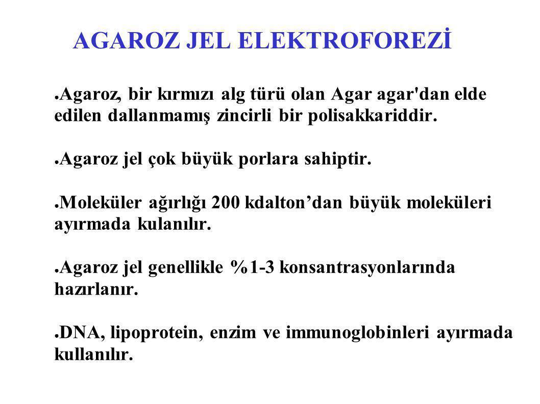 AGAROZ JEL ELEKTROFOREZİ ● Agaroz, bir kırmızı alg türü olan Agar agar'dan elde edilen dallanmamış zincirli bir polisakkariddir. ● Agaroz jel çok büyü