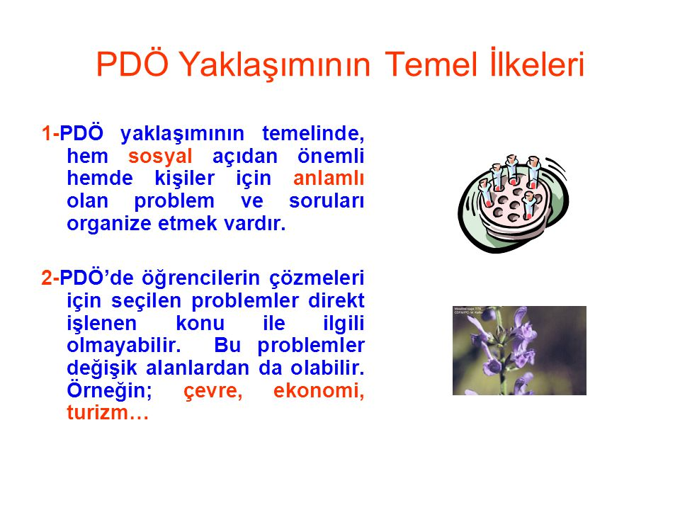 PDÖ Yaklaşımının Temel İlkeleri 1-PDÖ yaklaşımının temelinde, hem sosyal açıdan önemli hemde kişiler için anlamlı olan problem ve soruları organize et
