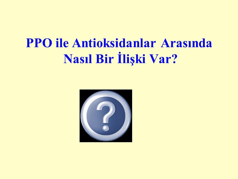 PPO ile Antioksidanlar Arasında Nasıl Bir İlişki Var?