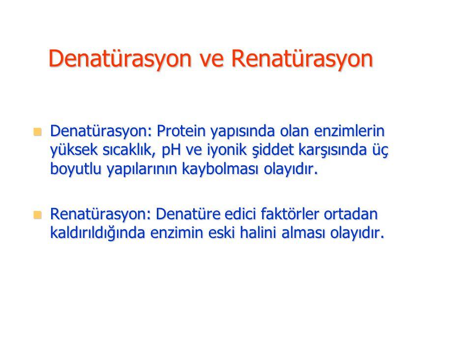 Denatürasyon: Protein yapısında olan enzimlerin yüksek sıcaklık, pH ve iyonik şiddet karşısında üç boyutlu yapılarının kaybolması olayıdır. Denatürasy