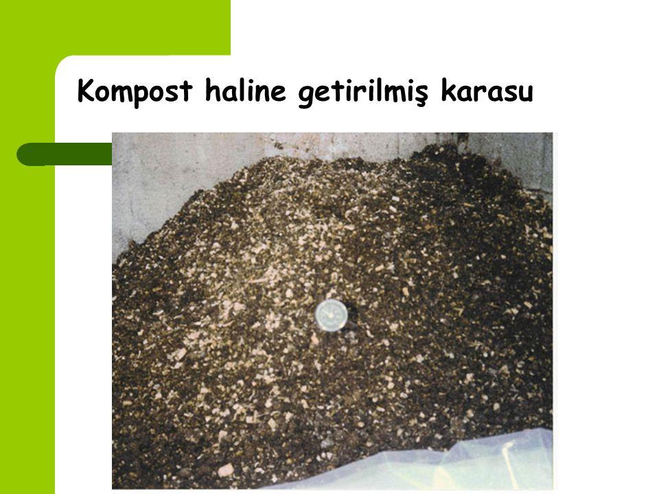 Karasuyun Kompost haline getirilmesi Mısır püskülü, buğday sapı, zeytin yaprakları gibi bazı tarım ürünlerinin artıkları ile karasuyun karıştırılması