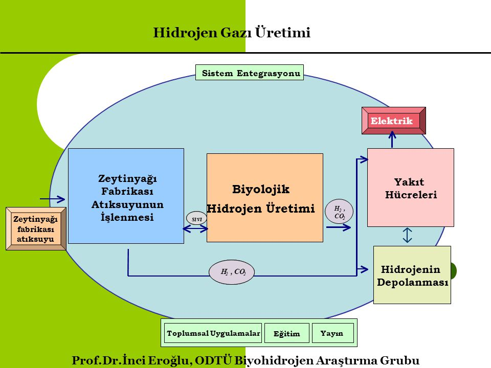 Bir reaktör modeli V= 4 m 3, COD=5000 mg/L; OMW = 3 m 3 ; pH= 6.8 – 7.0 adj.; COD out = 1710 mg/L; FR =980-1200 L/day 5 – 7 day