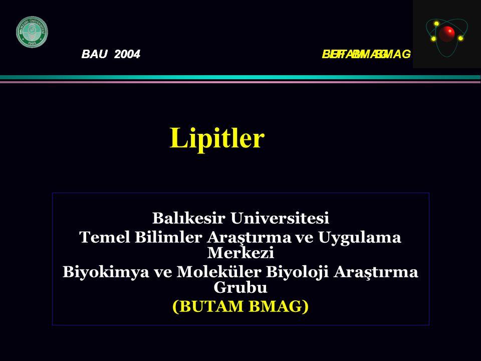 BAU 2004FEF BMAG Balıkesir Universitesi Temel Bilimler Araştırma ve Uygulama Merkezi Biyokimya ve Moleküler Biyoloji Araştırma Grubu (BUTAM BMAG) BAU