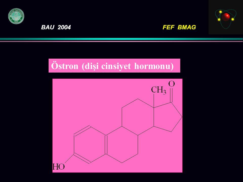 BAU 2004FEF BMAG Östron (dişi cinsiyet hormonu)