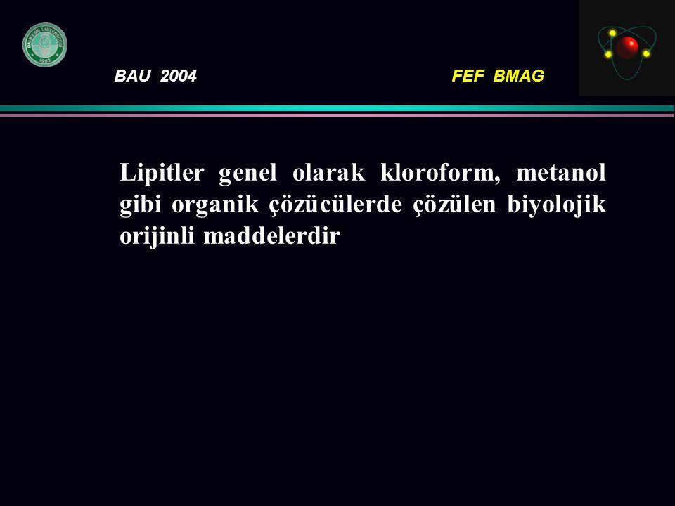 BAU 2004FEF BMAG Lipitler genel olarak kloroform, metanol gibi organik çözücülerde çözülen biyolojik orijinli maddelerdir