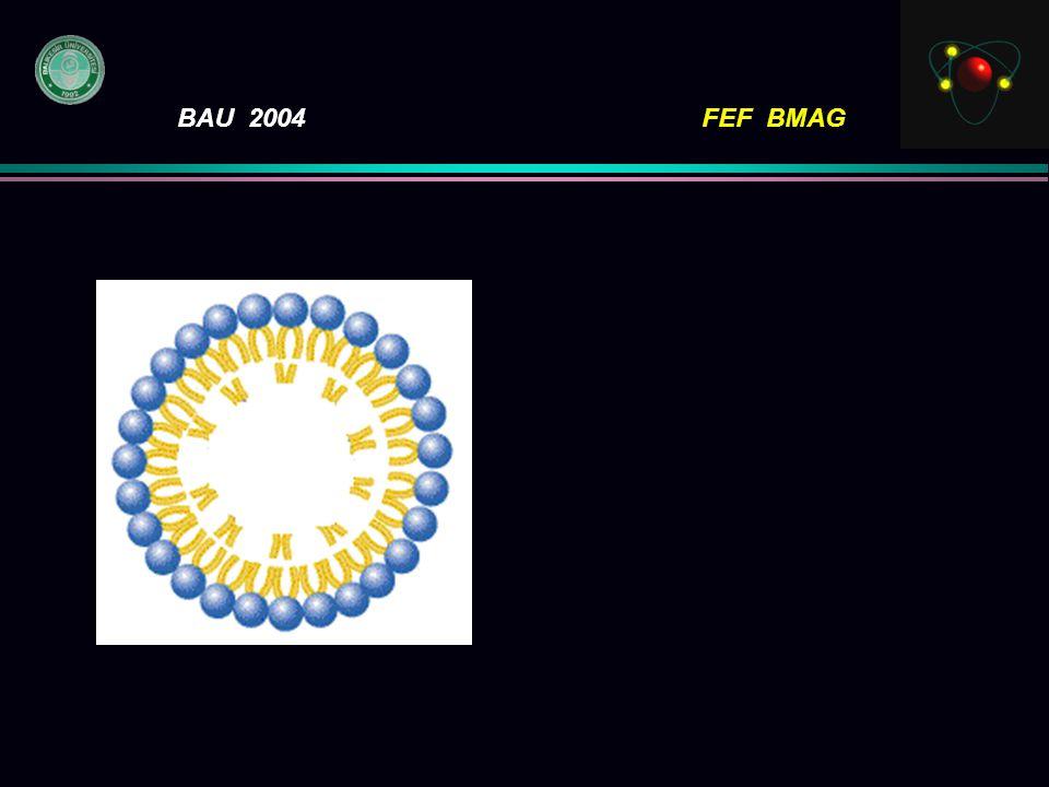 BAU 2004FEF BMAG