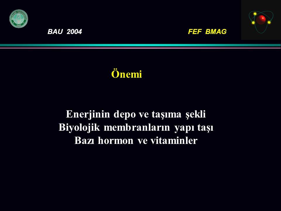 BAU 2004FEF BMAG Önemi Enerjinin depo ve taşıma şekli Biyolojik membranların yapı taşı Bazı hormon ve vitaminler
