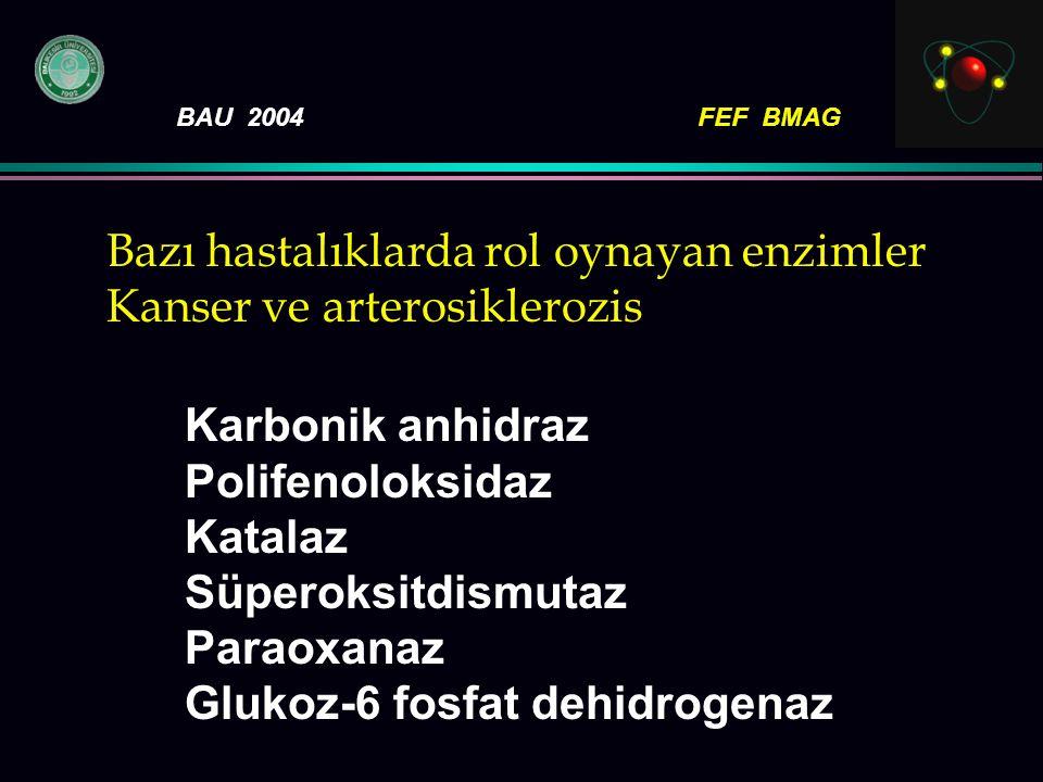BAU 2004FEF BMAG Bazı hastalıklarda rol oynayan enzimler Kanser ve arterosiklerozis Karbonik anhidraz Polifenoloksidaz Katalaz Süperoksitdismutaz Para