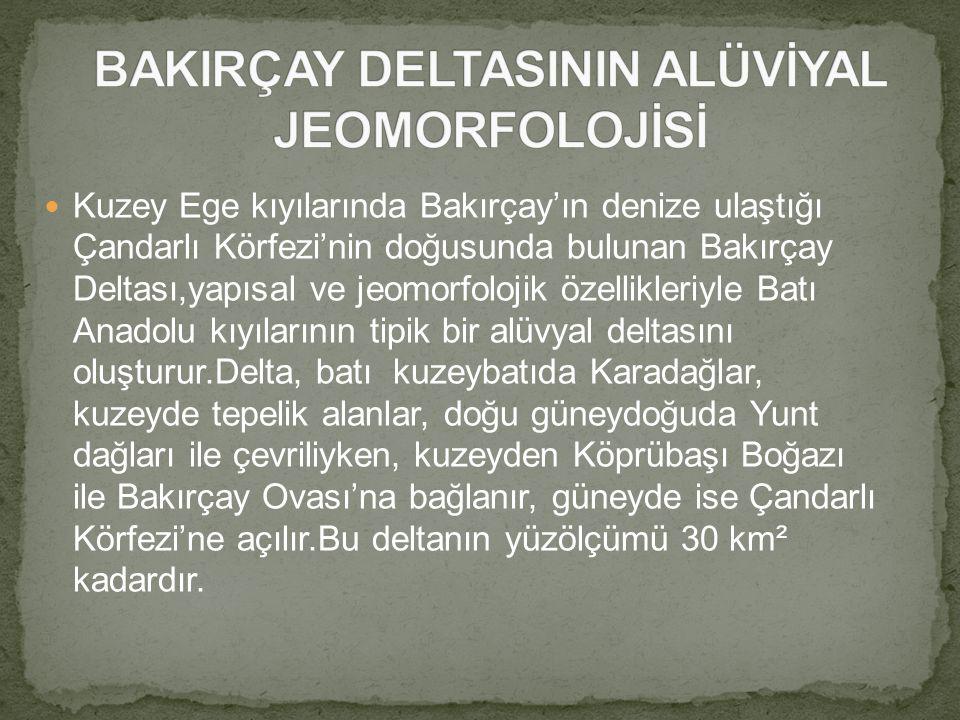 Kuzey Ege kıyılarında Bakırçay'ın denize ulaştığı Çandarlı Körfezi'nin doğusunda bulunan Bakırçay Deltası,yapısal ve jeomorfolojik özellikleriyle Batı