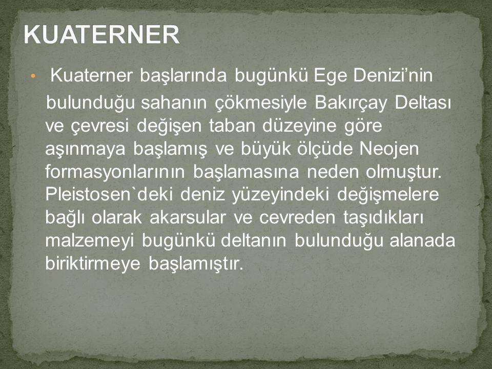 Kuaterner başlarında bugünkü Ege Denizi'nin bulunduğu sahanın çökmesiyle Bakırçay Deltası ve çevresi değişen taban düzeyine göre aşınmaya başlamış ve