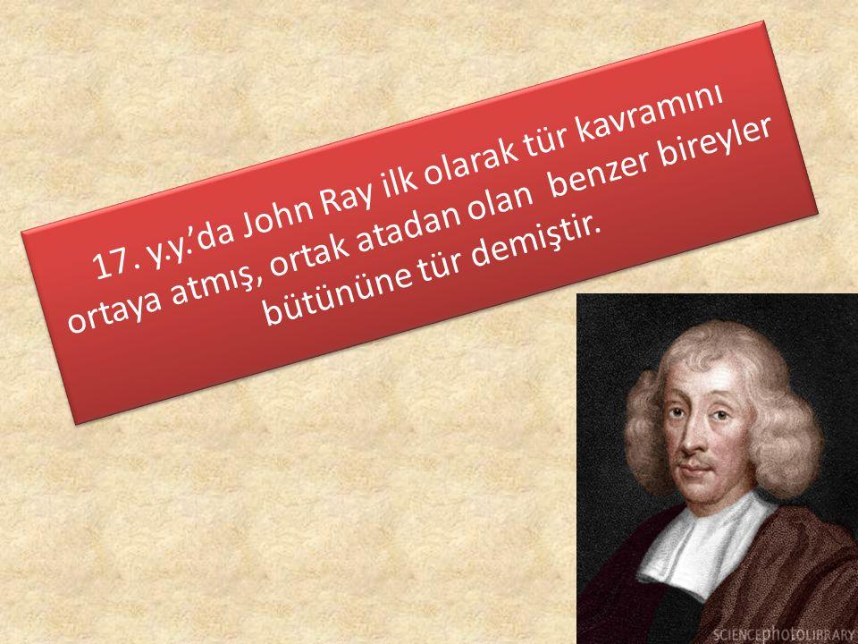 17. y.y.'da John Ray ilk olarak tür kavramını ortaya atmış, ortak atadan olan benzer bireyler bütününe tür demiştir.