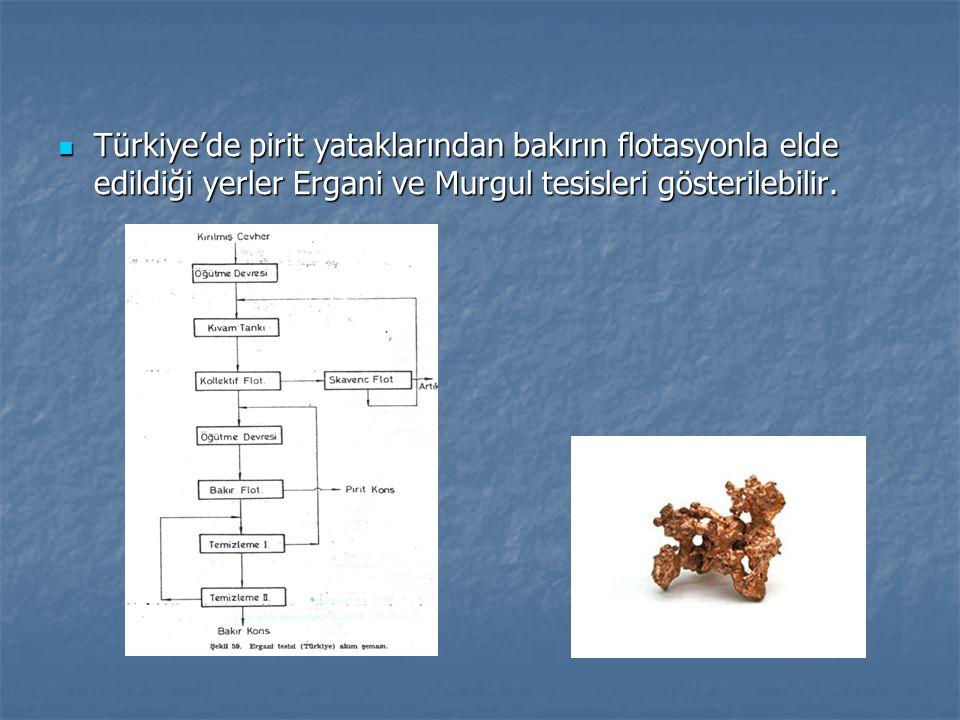 Türkiye'de pirit yataklarından bakırın flotasyonla elde edildiği yerler Ergani ve Murgul tesisleri gösterilebilir. Türkiye'de pirit yataklarından bakı